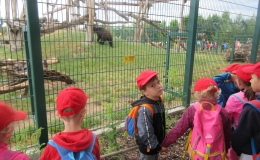 Berušky - Zoo Chleby